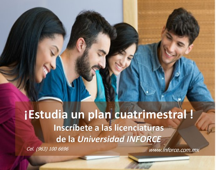 plan-cuatrimestral-universidad-inforce.jpg