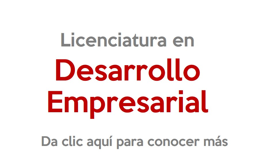 universidad-inforce-comitan-licenciatura-en-desarrollo-empresarial.jpg